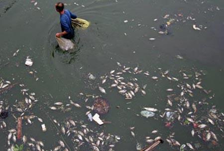 Ô Nhiễm Nguồn nước tại Hà Nam